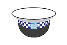 NSW Police Customer Services